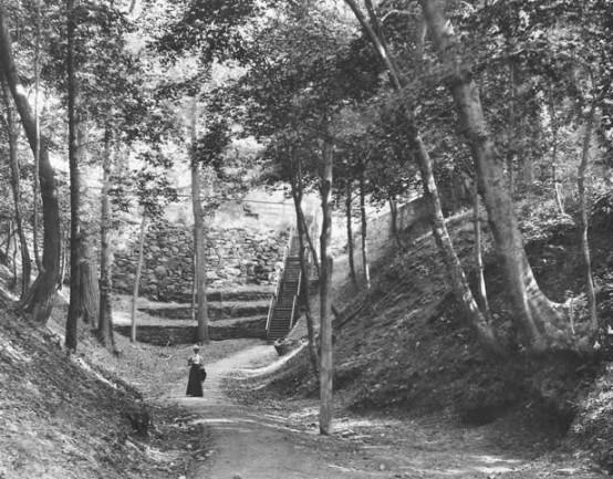 Ravine 1898